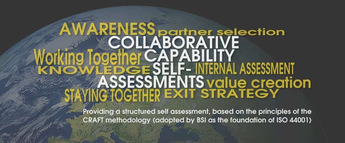 Capability Assessments